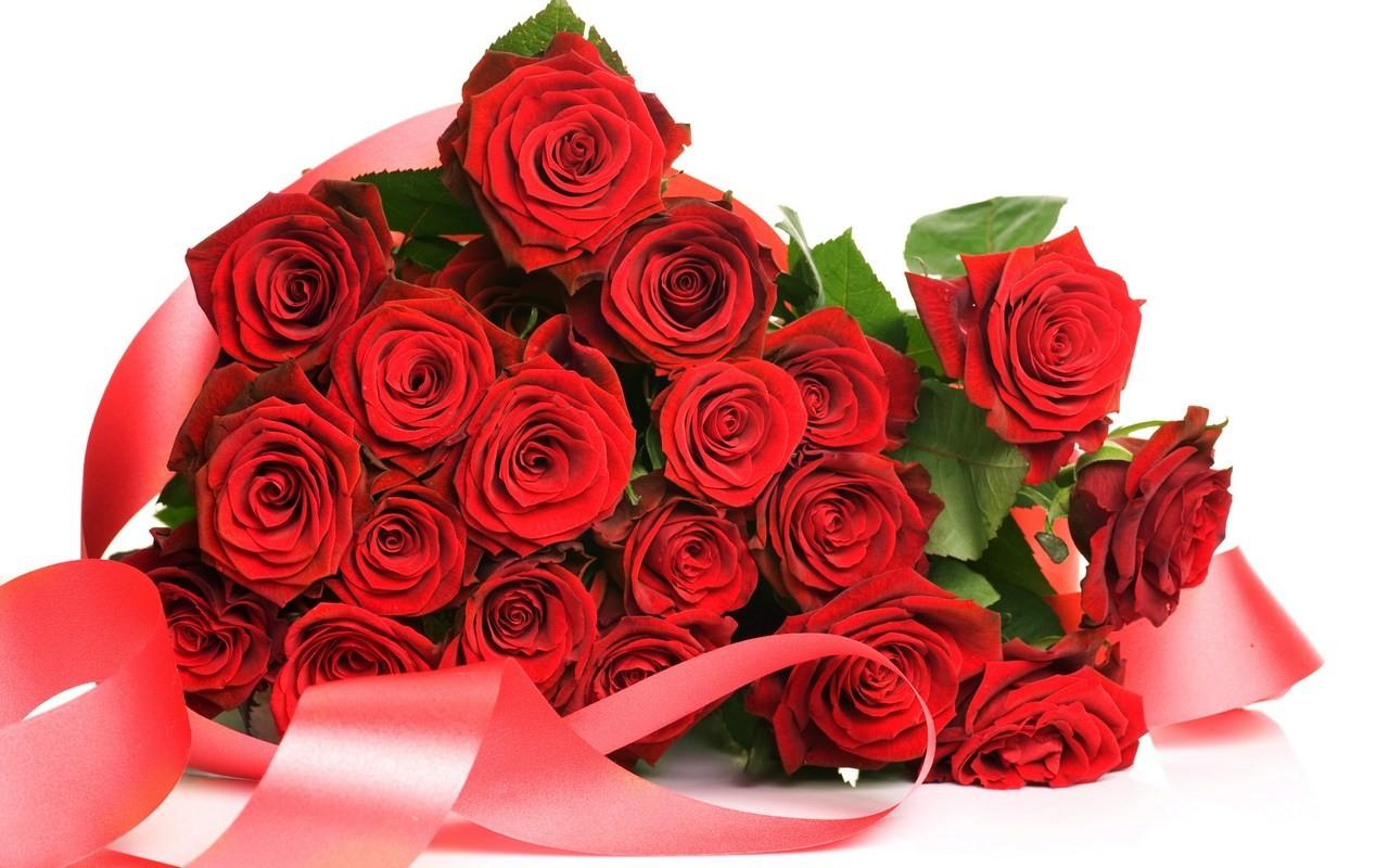 Hinh-hoa-hong-cho-valentine-1