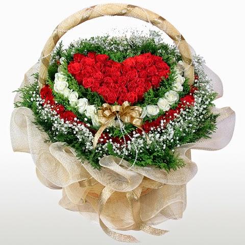 Hinh-hoa-hong-cho-valentine-11