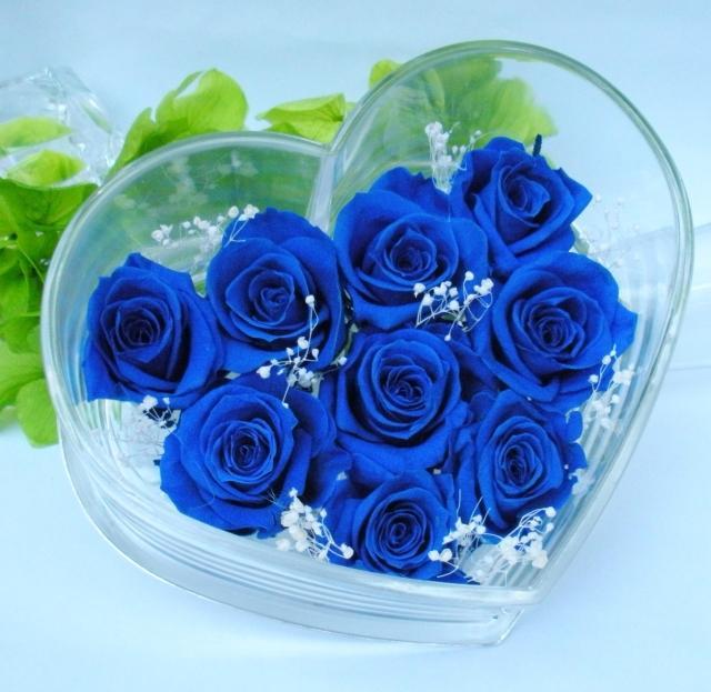 hoa-hong-xanh-dep-tang-nguoi-yeu-ngay-valentine-1