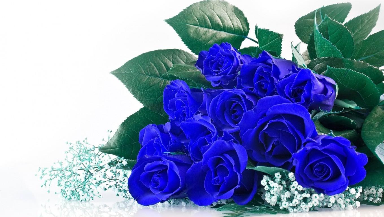 hoa-hong-xanh-dep-tang-nguoi-yeu-ngay-valentine-10