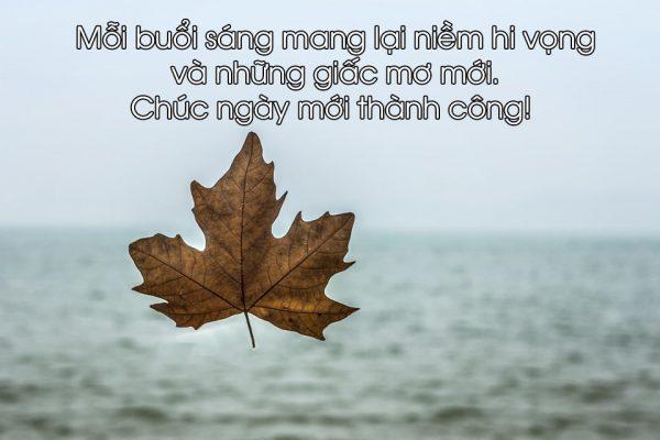 hinh-anh-chao-buoi-sang-chuc-buoi-sang-an-lanh