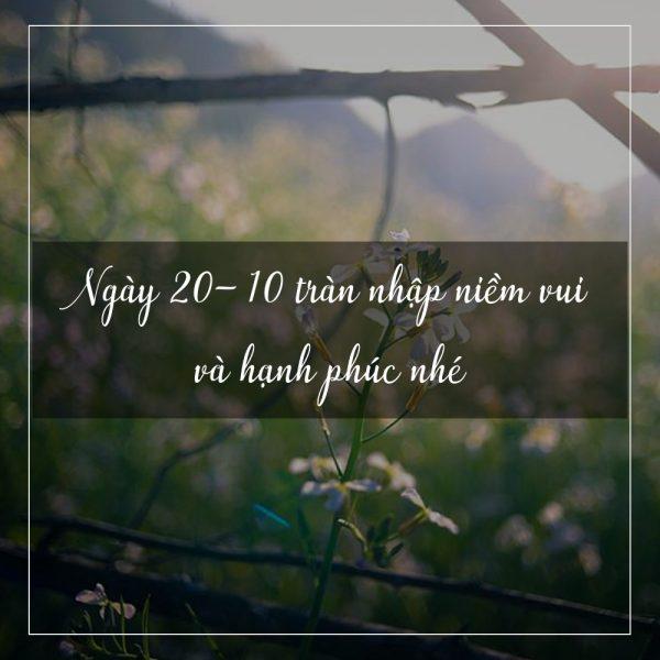 hinh-chuc-mung-ngay-20-10-moi-nhat
