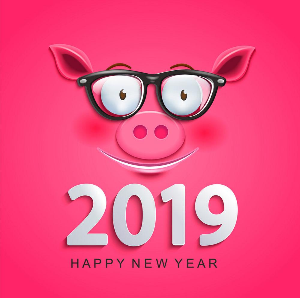 Năm nay là năm Kỷ Hợi 2019, vì vậy những hình ảnh chú lợn ngộ nghĩnh sẽ thường xuyên xuất hiện trong năm nay với những hình ảnh chúc mừng năm mới ...