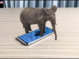 Tai-hinh-anh-animal-4d-cards-download