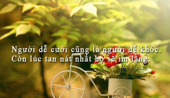 stt-hay-ngan-gon-chat