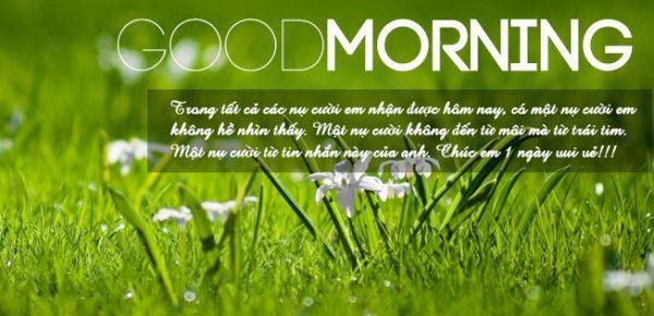 Lời chúc ngày mới tốt lành hay, vui vẻ, ý nghĩa nhất.
